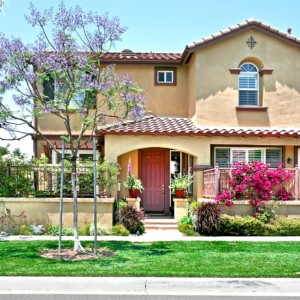 Ladera Ranch Homes for Sale